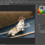【PhotoshopCC(フォトショップ)入門】選択範囲を保存する方法|アルファチャンネル