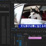 【PremierePro(プレミアプロ)】プロジェクトパネルのアイコンの種類について