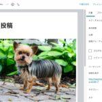 【WordPress(ワードプレス)】ブログ投稿時の画像サイズの種類とメディアライブラリ|メディア設定について